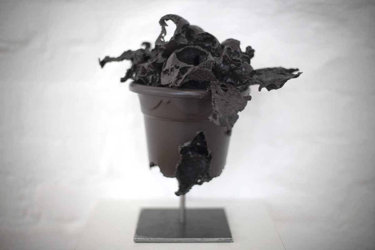 Baroque_Plant